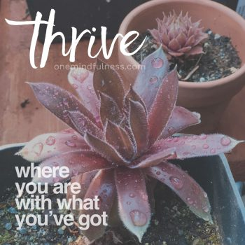 Thrive where you are with what you've got