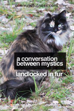 conversation between mystics: landlocked in fur