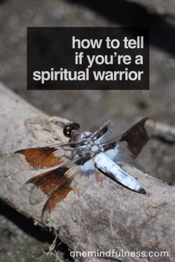 How to tell if you're a spiritual warrior