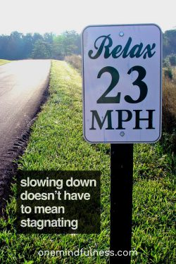 Slowing down doesn't have to mean stagnating