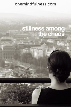 stillness among the chaos