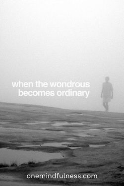 When the wondrous becomes ordinary