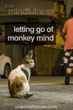 Mindfulness: Letting go of monkey mind
