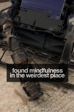 found mindfulness in the weirdest place