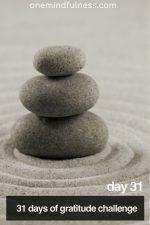 31 Days of Gratitude Challenge Day 31