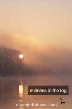 stillness in the fog