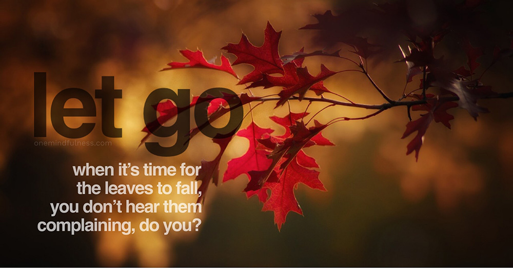 Let go: When it's time for the leaves to fall, you don't hear them complaining, do you?
