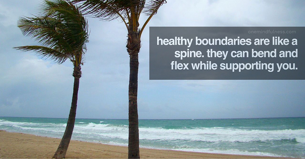 Healthy boundaries are like a spine: can bend and flex.