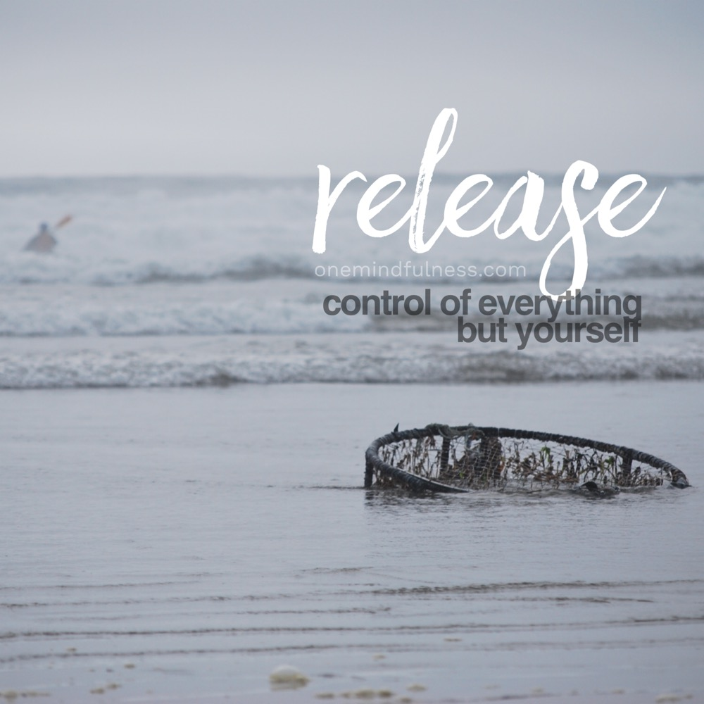 Release control of everything but yourself (Remindfulness prompt)